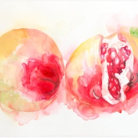 Early pommegranates