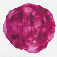 9.-Leeanne-Crisp-2020.-Rose-Mandala-for-the-time-of-Covid-W_C-on-Arches-paper-H-74cms-x-W-105-cms_low-res-1-scaled