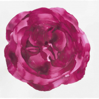 5.-Leeanne-Crisp2020_Rose-Mandala-for-the-time-of-Covid_Watercolour-on-Arches-paper_H74-cms-xW105cms_low-res-1-scaled